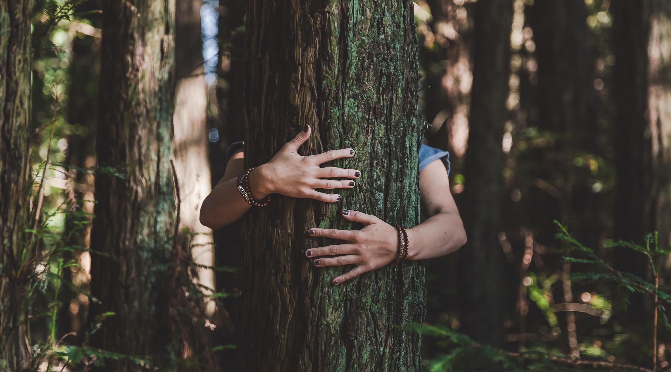 abbraccio profumo di vita intera_5