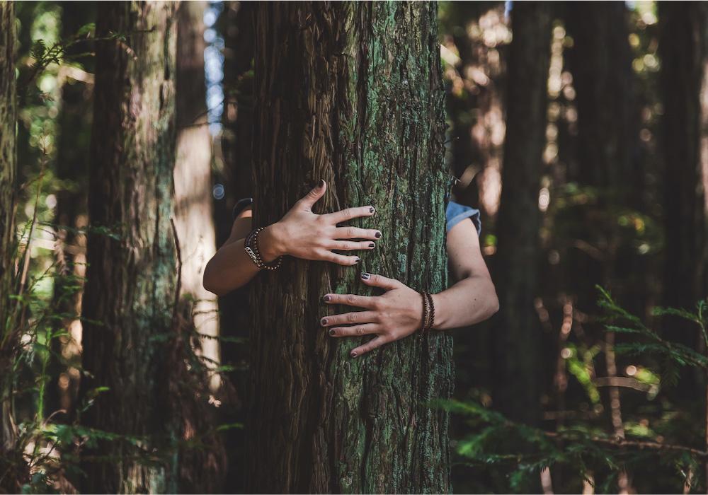 Gli abbracci profumano di vita