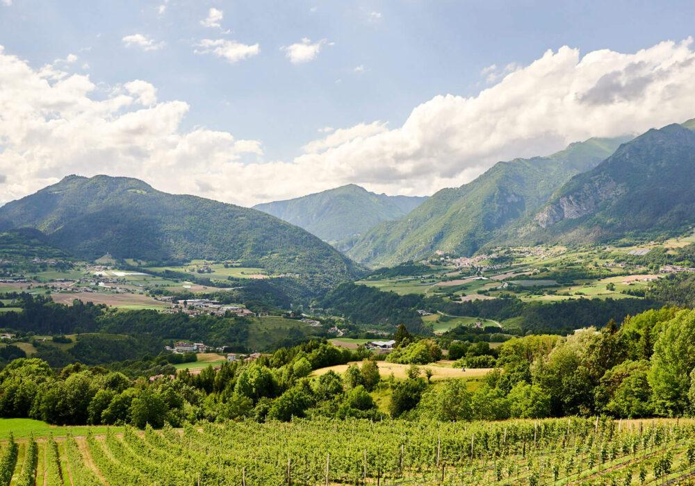 Via libera alle vostre vacanze in Trentino… rispettando le distanze di sicurezza!