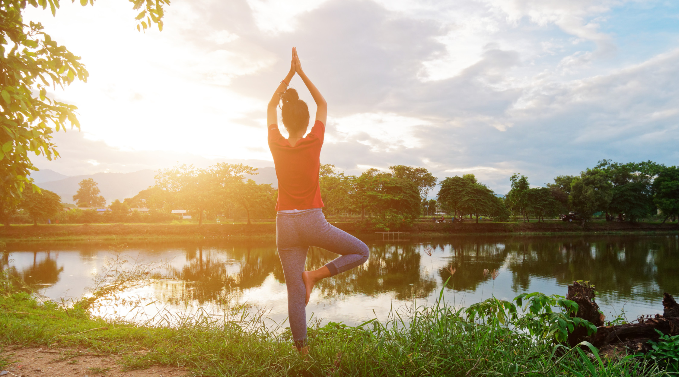Yoga posizione dell'albero   La Trentina