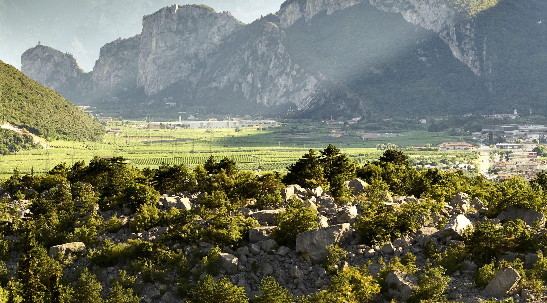 Susina di Dro   Valle del Sarca   La Trentina