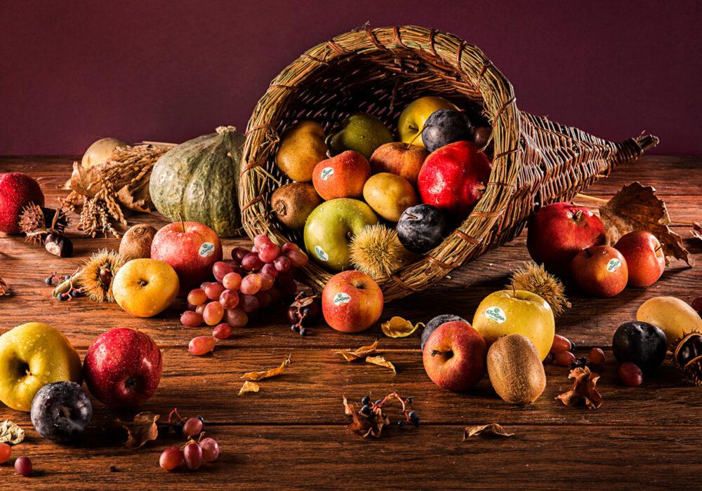 Ottobre: la cornucopia dell'agricoltura trentina